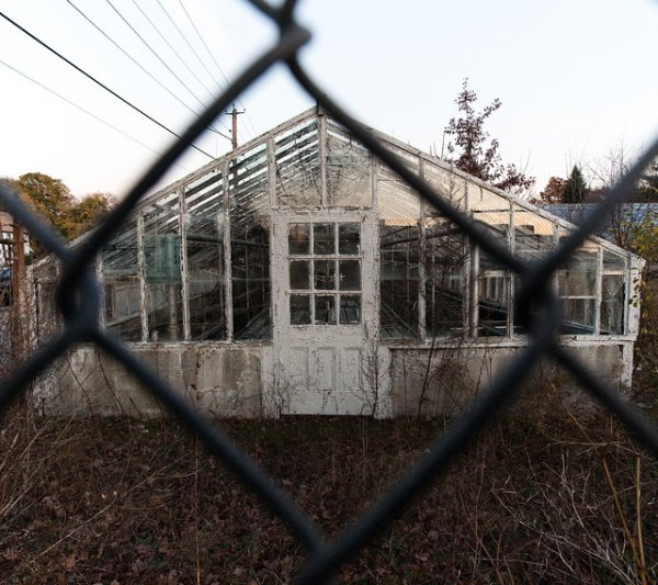 Supplanted: 8 Overgrown & Abandoned Greenhouses