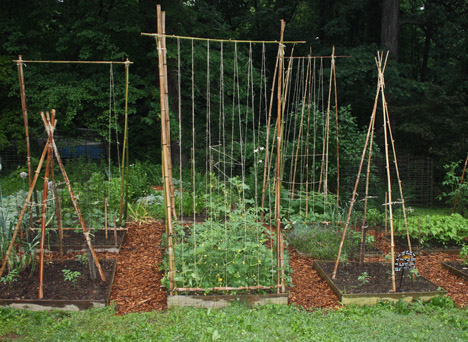 Strong Sustainable 12 Fun Diy Bamboo Projects Webecoist