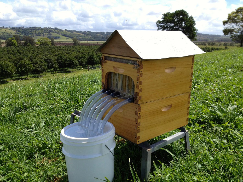 flow hive 3