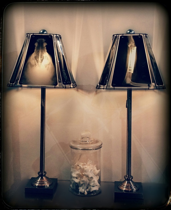 Animal X-Ray Lampshades 12