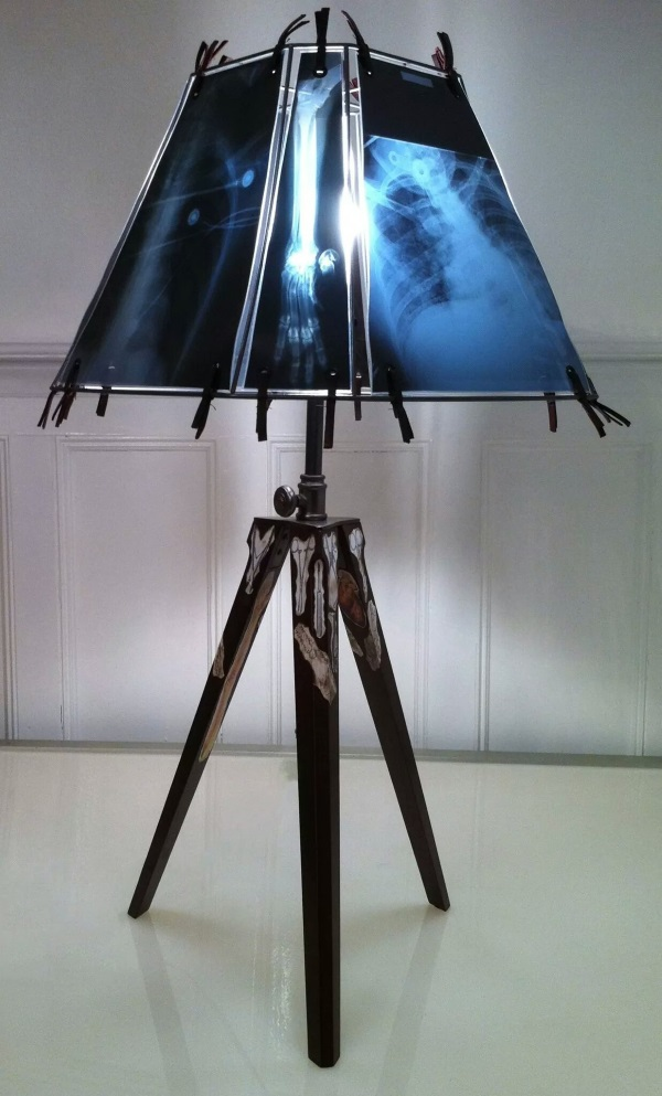 Animal X-Ray Lampshades 21