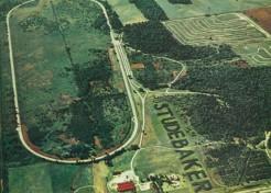 White Pine Fever: The Studebaker Tree Sign