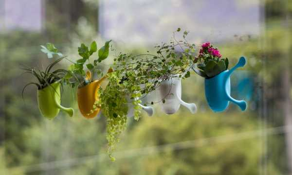 suction-cup-planters-5