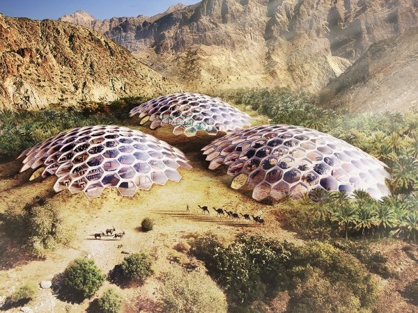 Dome Base: UAE's Biodomes Wildlife Conservation Center
