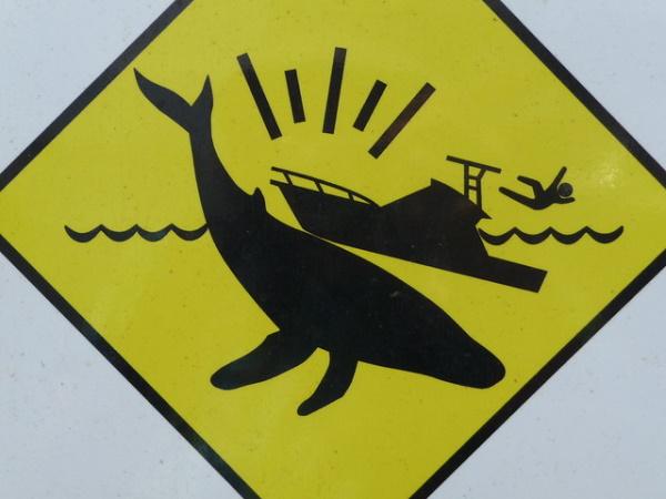 Figure Fear: 10 Environmental Stick Figure Warning Signs